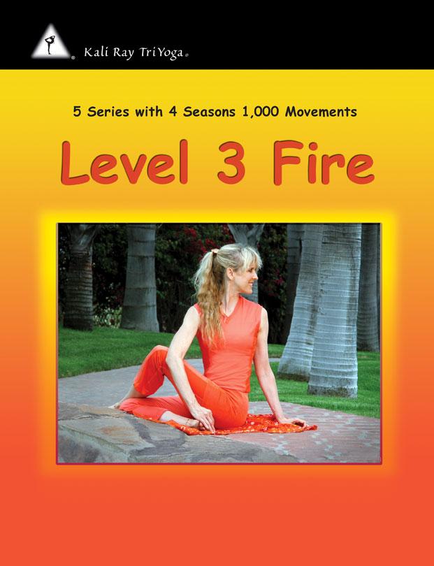 TriYoga Level3 Internship Manual
