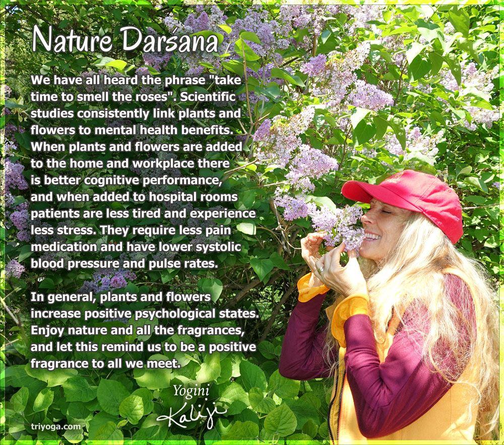 KJI_nature_darsana_may2016