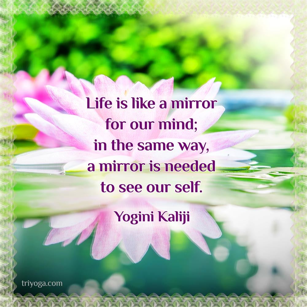 KJI_quote_reflection_oct2014