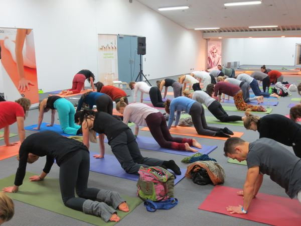 40-70 participants in each TriYoga session