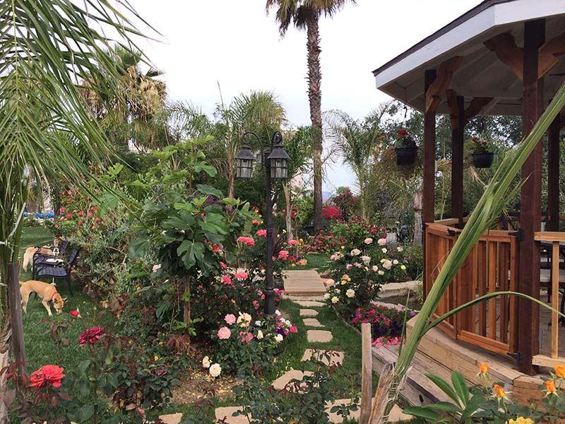 TY_Malibu_Garden