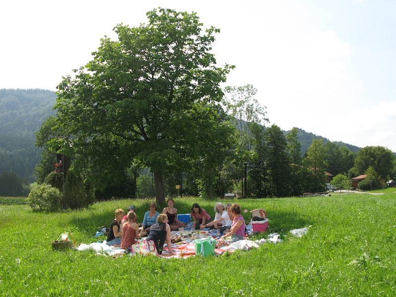 picnic surroundings