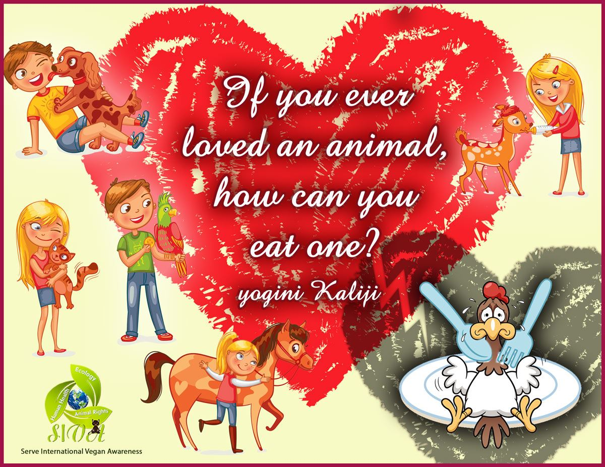 SIVA_KJI_quote_love_eat_animals_feb2017