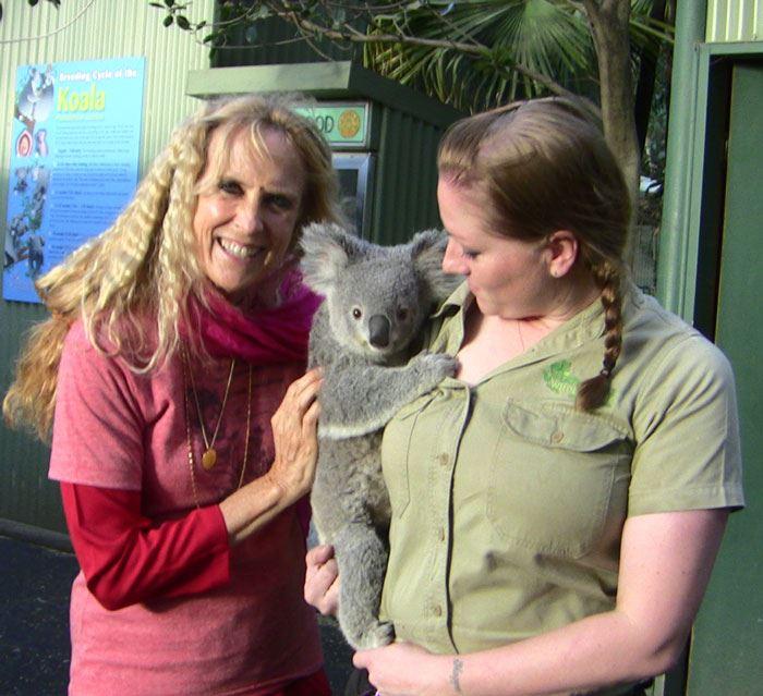 Kaliji_koala