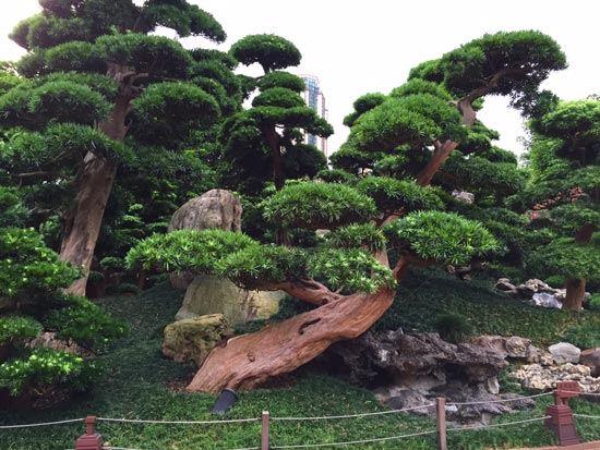 TriYoga_HongKong_june2015_4