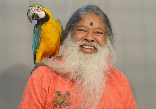 SS_parrot