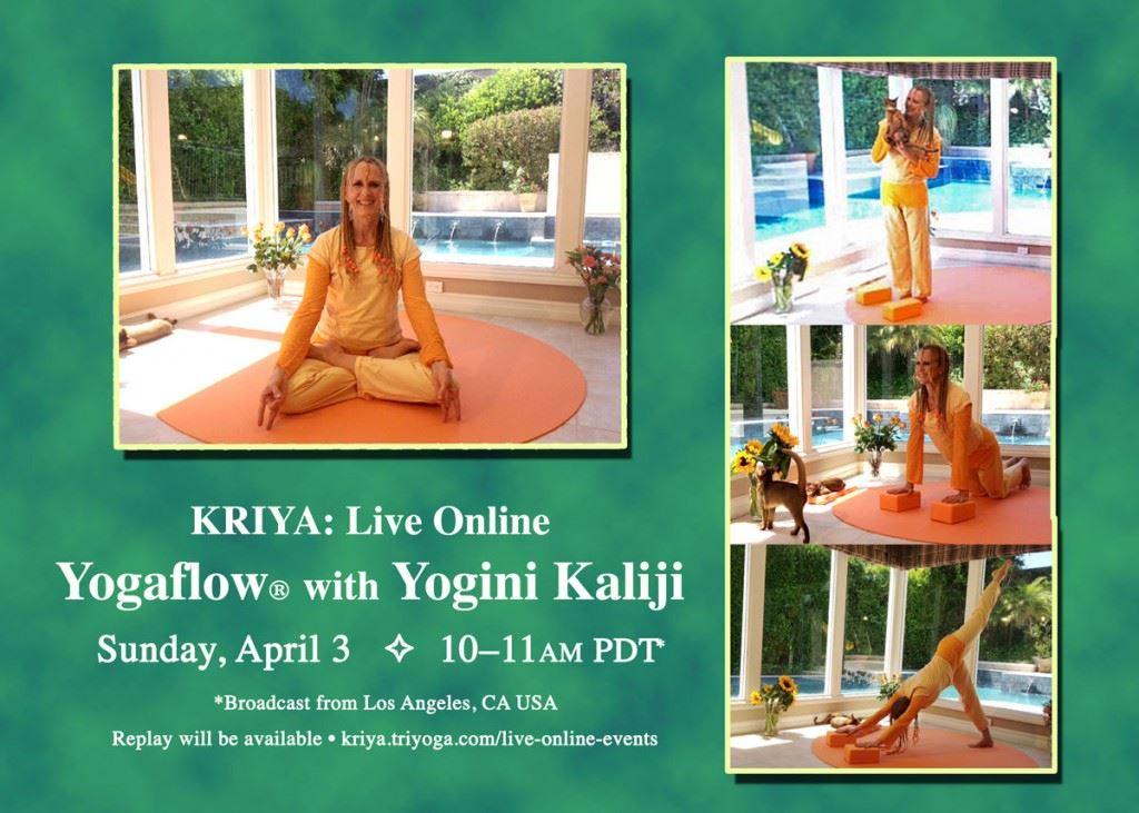 Next_KRIYA_Live_KJI_April2016