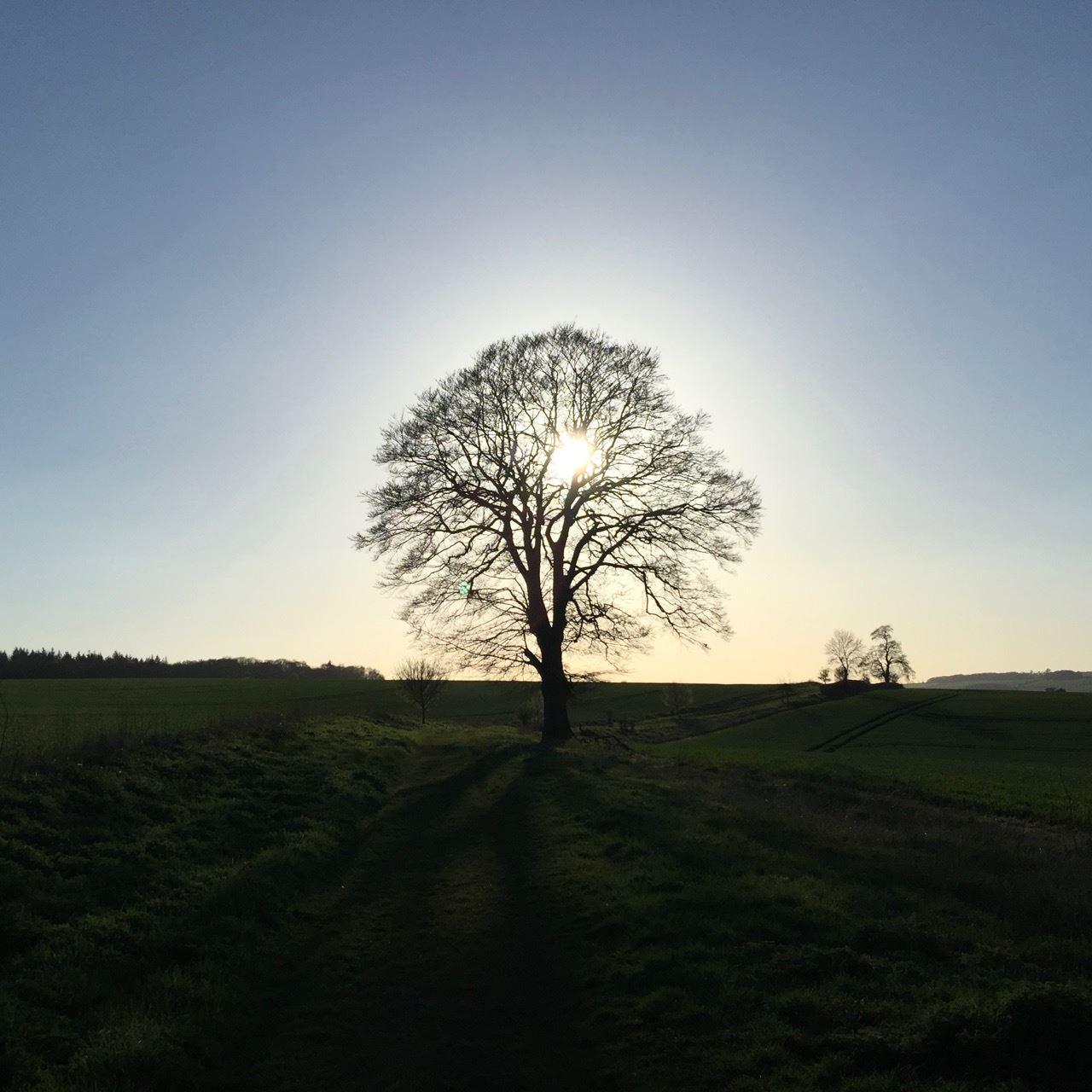 Charlbury countryside