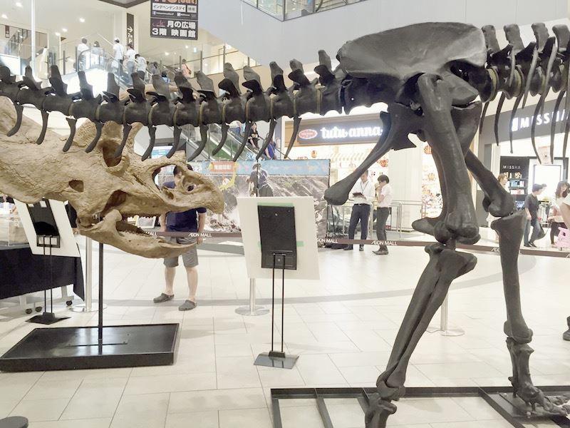 Kyoto_Dinosaur