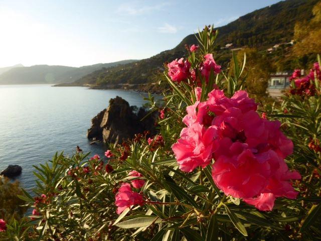 Sicily_coast
