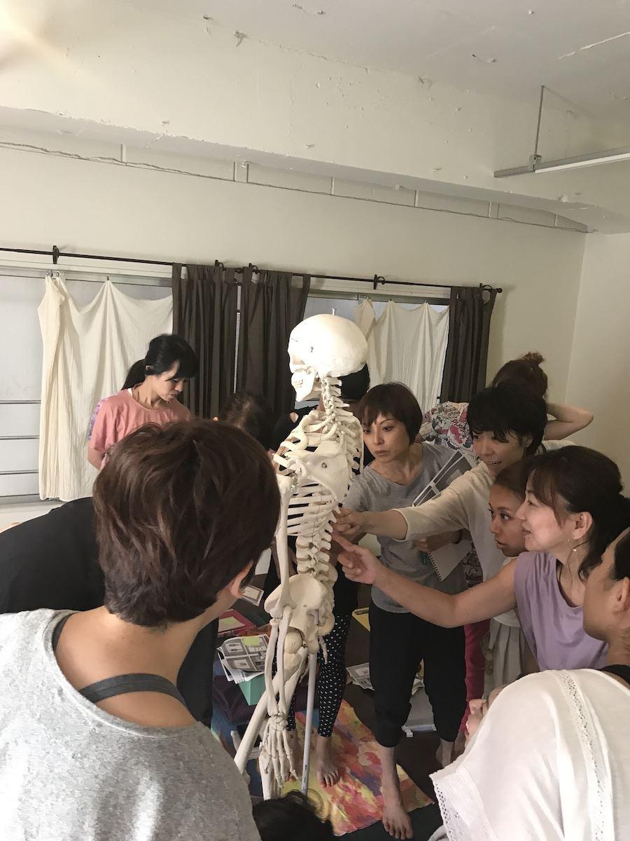Kyoto_2017_Anatomy
