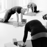 Level 2 Teacher Training with Tanja & Peter ~ Nov'19-Jan'21